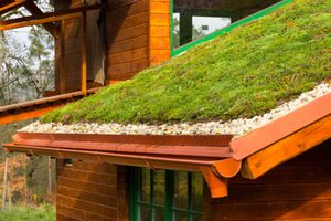 Grass eco roof on building
