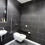 Disabled WC, Charles Landau dental practice refurbishment