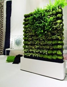 Natural green wall made from plants