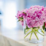 Vase of peonies on aesthetic clinic reception desk